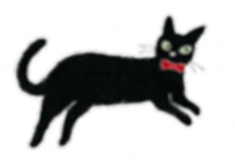 aboutcat.png