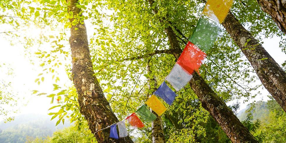 CROWDFUNDING Le Champ du Présent | Méditation et Mantras Tibétains