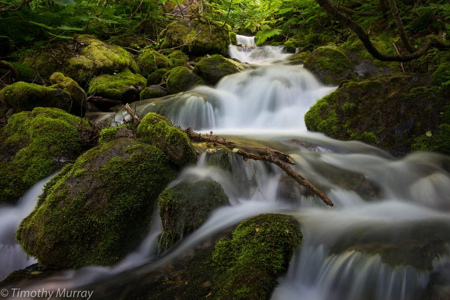 Alaskan Cascade