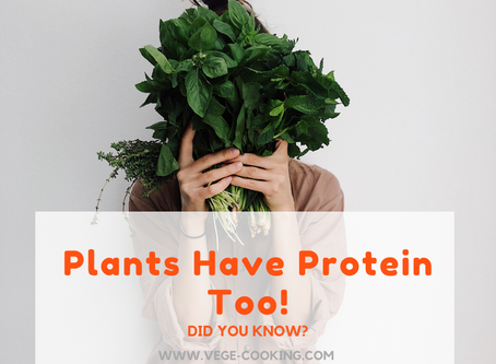 Plants have protein too!