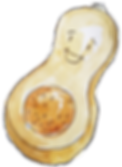 Butternut Squash Cropped.png