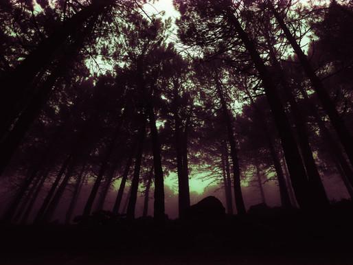 The Problem of Transcendence