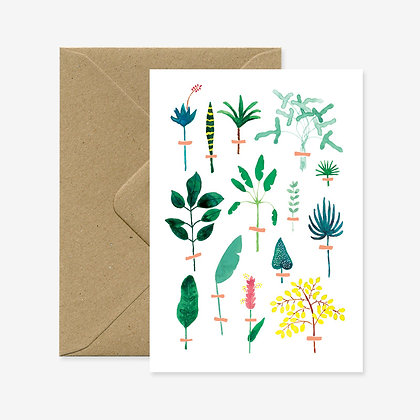 Carte de voeux Herbier exotique - All the way to say -  Marseille