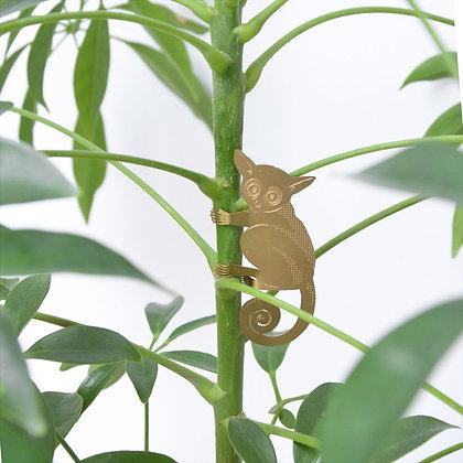 Galago, bush baby en laiton à poser en déco de plantes | Trois Fenêtres Marseille