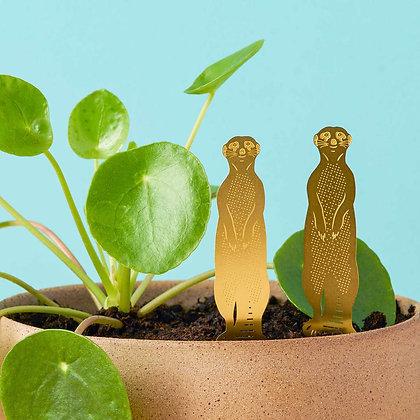 Suricate, animal en laiton à poser en déco de plantes | Trois Fenêtres