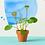 Fleurs sauvages en laiton doré - Décoration plantes | Marseille