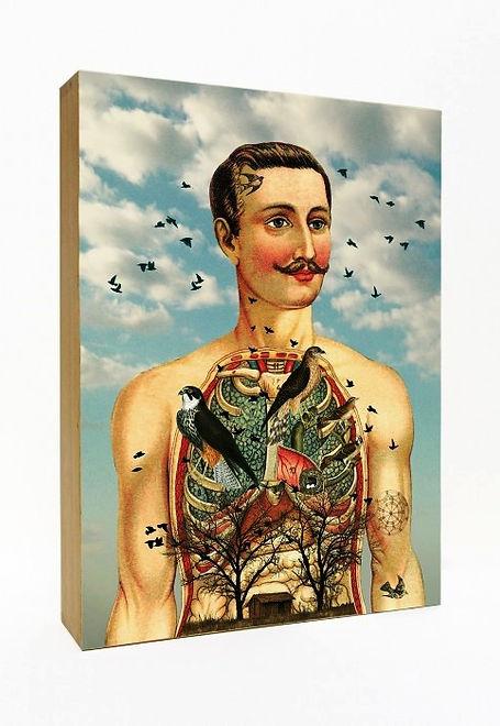 Des boites à lumière aux illustrations originales de l'anatomie du corps humain, des années folles, des univers oniriques et des arts.