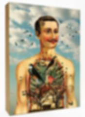 Anatomie du corps humain - Cabinet de curiosités Marseille - Idée cadeau -