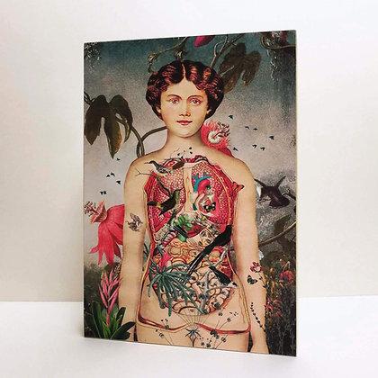 Lightbox Anatomie de la femme - Torse ouvert sur la nature - Déco Marseille
