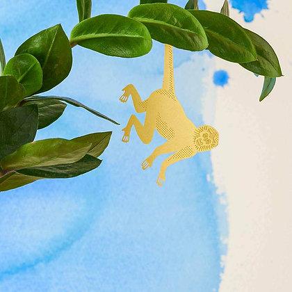 Singe araignée - Cadeau pour plant lovers | Trois Fenêtres