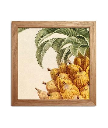 Cadre image tropicale Quart d'ananas | Trois Fenêtres à Marseille
