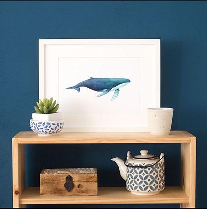 Affiche aquarelle Baleine - Boutique de cadeaux Trois Fenêtres