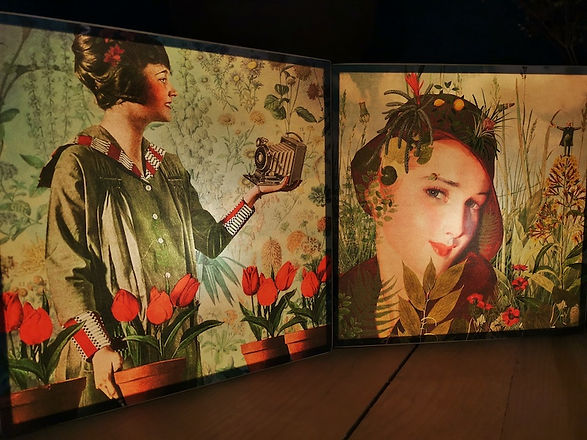 lightbox-femme-photo.jpeg