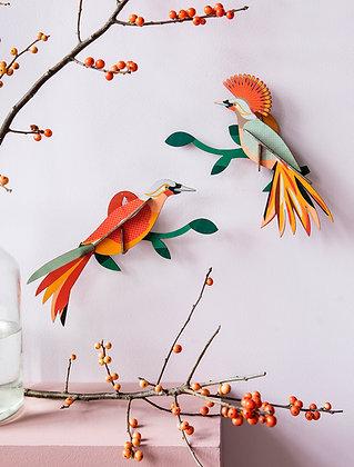 Oiseau décoratif pour déco murale tropicale - Paradisiers Obi de Studio Roof - Marseille
