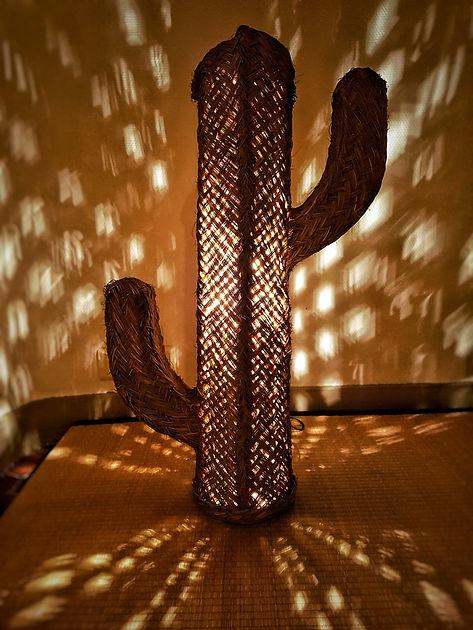 faux cactus deco - lampe - Marseille