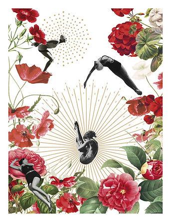 Affiche herbier vintage
