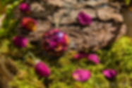 Pendentifs Fleurs de rose - Concept Store Trois Fenêtres Marseille