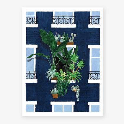 Affiche balcon et plantes tropicales luxuriantes | Marseille