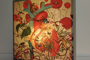 Lampe Coeur Anatomique