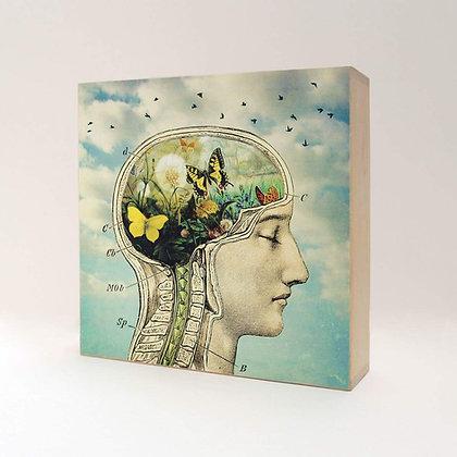 Anatomie du cerveau humain - Décoration cabinet medical - Marseille