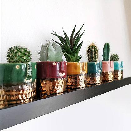 Cache pot visage -  Cactus, succulentes - Marseille | Plantophile