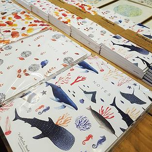 Notebooks illustrés Marseille