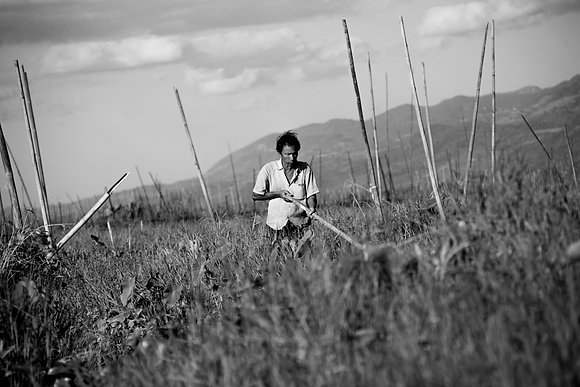 Photographie Noir et blanc Birmanie - Paysan Inlelake - Aida Rojas - Marseille