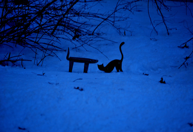 Felinesque creatures...