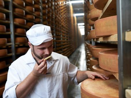 Der Felsenkeller Käse: wo die Qualität bereits auf der Weide beginnt