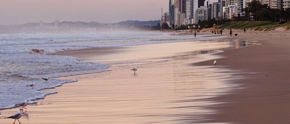 Surfers_Paradise.jpg