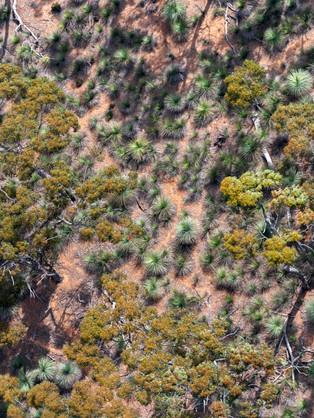 Kangaroo Island from Above,11