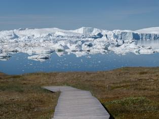 Illulissat 5