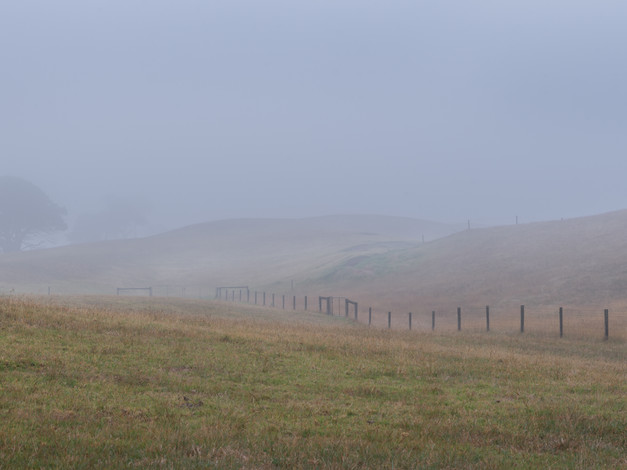 And the Fog Rolls in