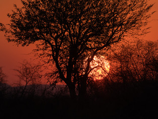 African sunsets 2