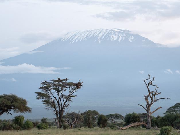 Mt Kiliminjaro