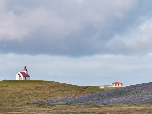 Iceland - Churches & Lupins