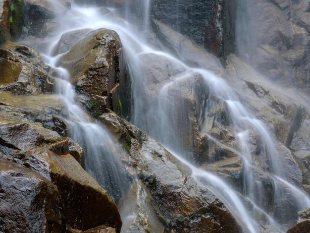 Steavenson Falls detail