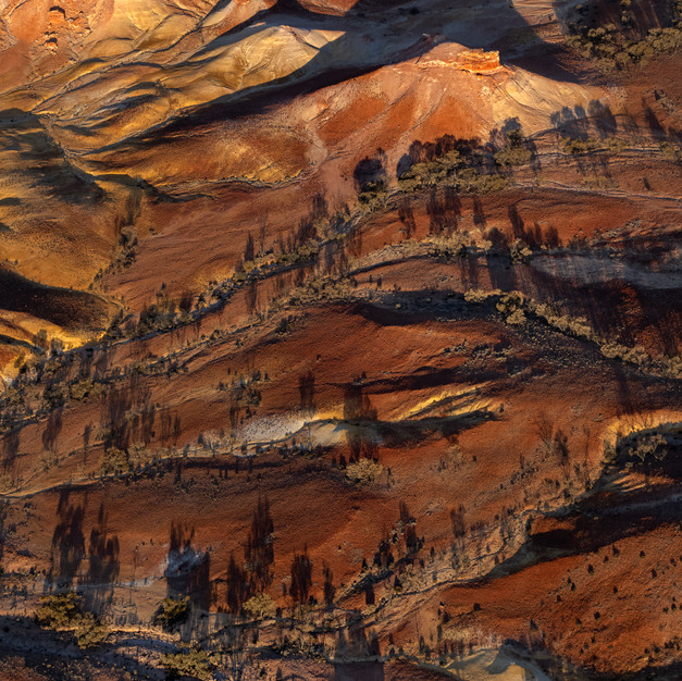 The Painted Hills 17