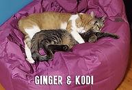 GingerandKodi.jpg