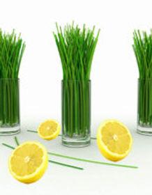 lemongrass.jpg