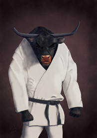 The Bull Fighter