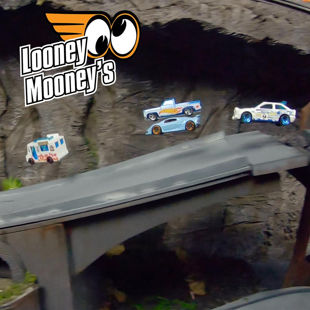 The Looney Mooney's