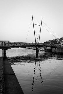 Wellington waterfront in black and white