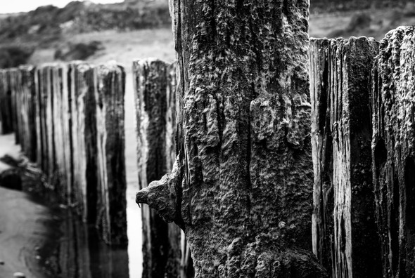 Patea beach pylons close