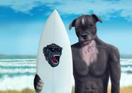 Surf puppy