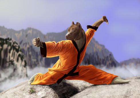 Shaolin Dog