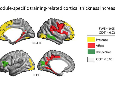 New Study Shows How Specific Types Of Meditation Affect Different Areas Of The Brain