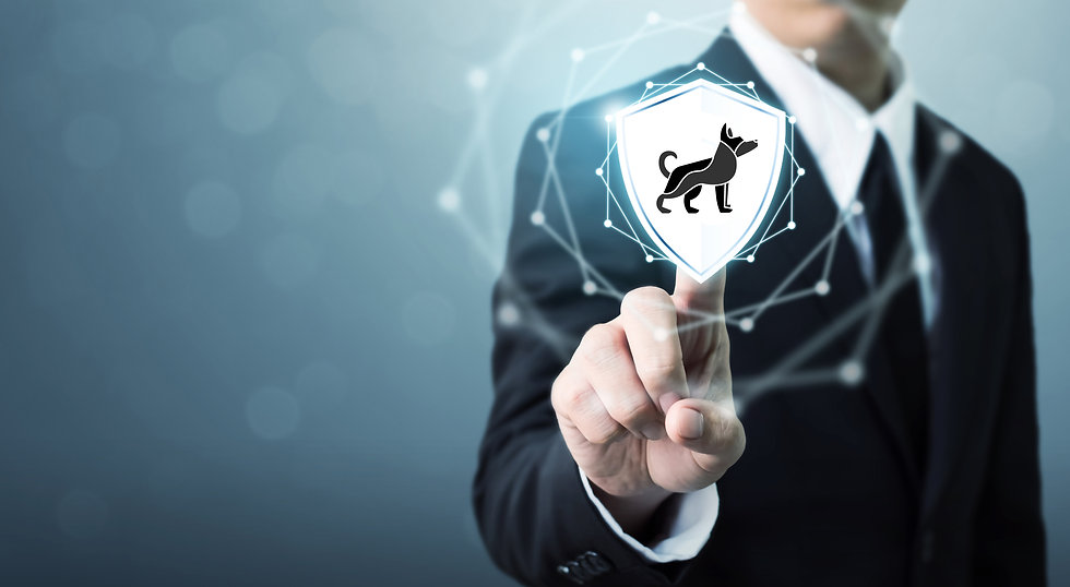 Black Dog Shield 1.jpg