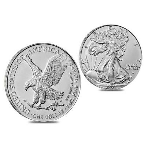 2021 Silver eagle type 2