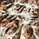 Thumbnail: Old Fashioned Buttermilk Cinnamon Rolls